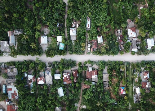 Aerial Photography of Houses Surrounded by Green Trees