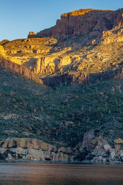 Ảnh lưu trữ miễn phí về arizona, cây xương rồng, hồ, hồ apache