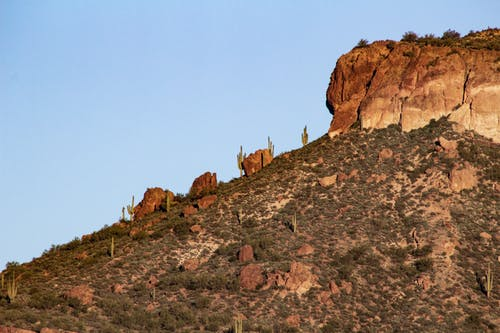 Ảnh lưu trữ miễn phí về arizona, cây xương rồng, hồ apache, núi