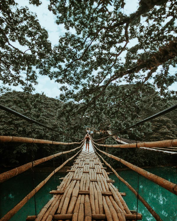 Back View Photo of Woman Standing on Wooden Bridge