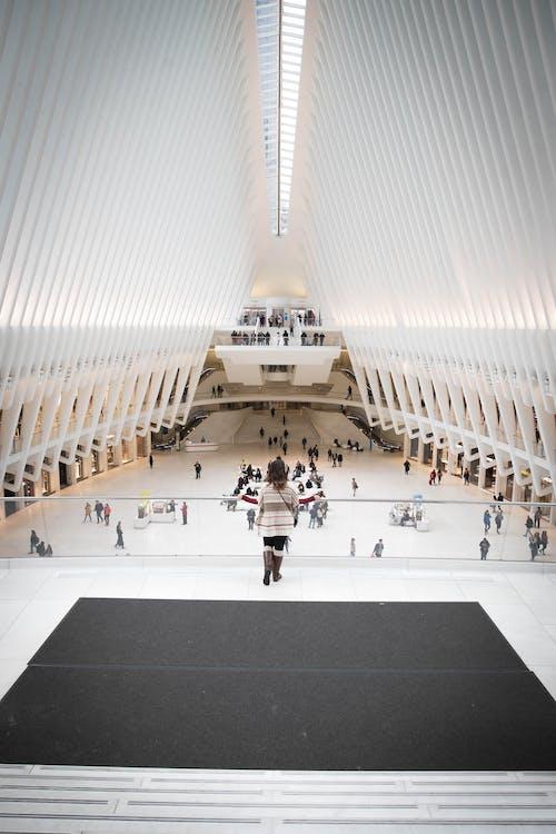 世贸中心站, 光, 商業, 城市 的 免费素材照片