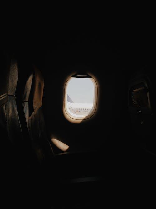 Foto d'estoc gratuïta de aviació, avió, clareja, color