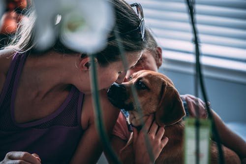 Photo of Woman Kissing a Dog