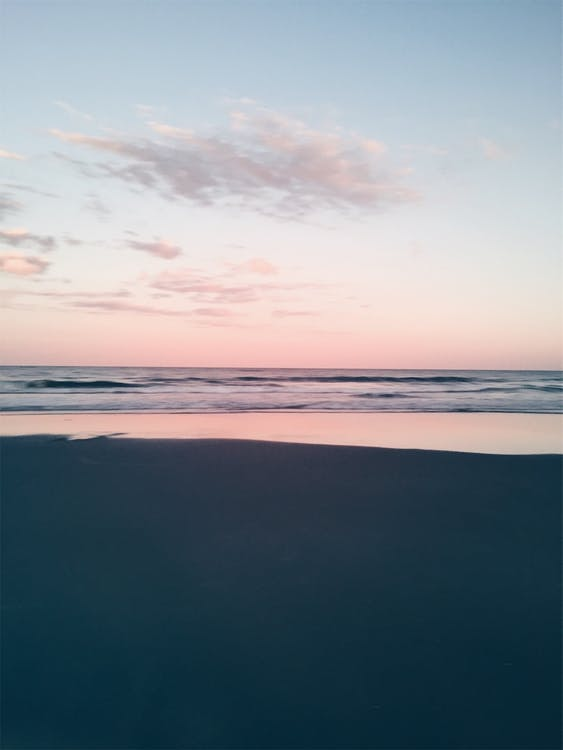 bờ biển, chén, cốc