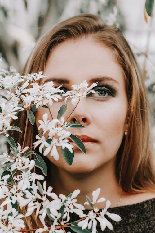 cận cảnh, cánh hoa, chụp ảnh