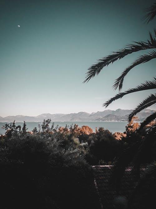 Fotobanka sbezplatnými fotkami na tému denné svetlo, exteriéry, fotografia prírody, hory