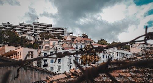 Free stock photo of art, building, city, cityscape