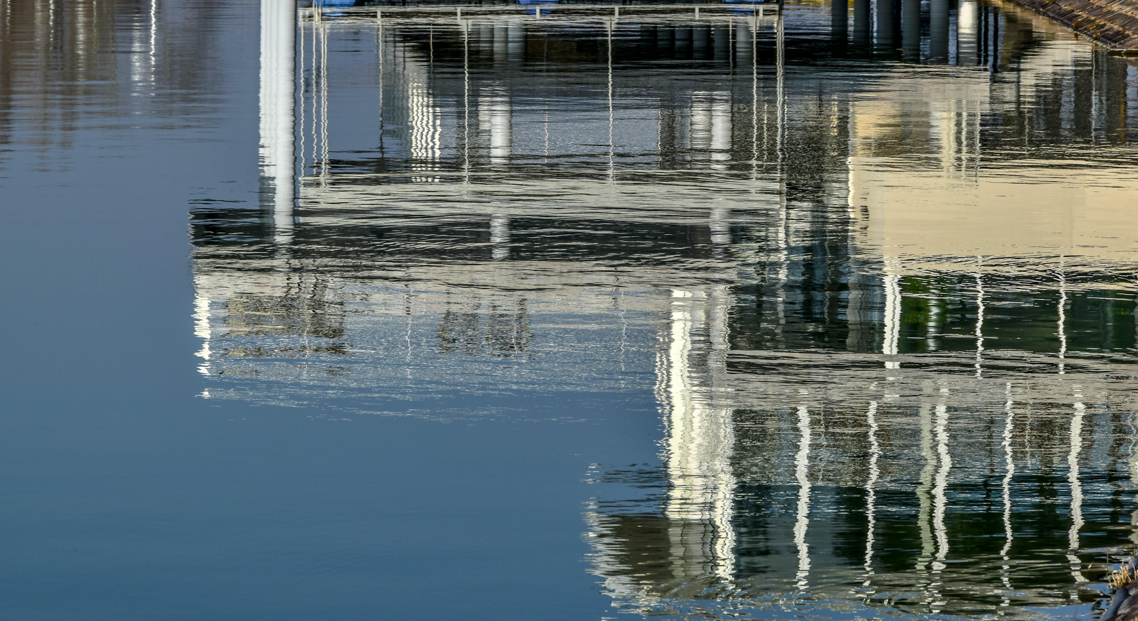 Free stock photo of water, lake, reflection, mirror