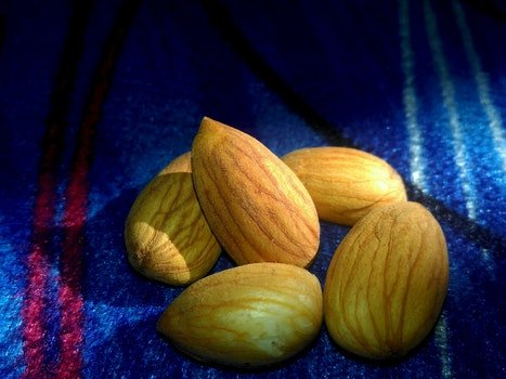 Free stock photo of food, almond, almonds, healthcare