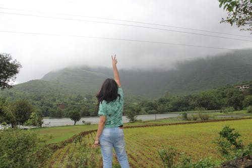 Ilmainen kuvapankkikuva tunnisteilla #peace #nature