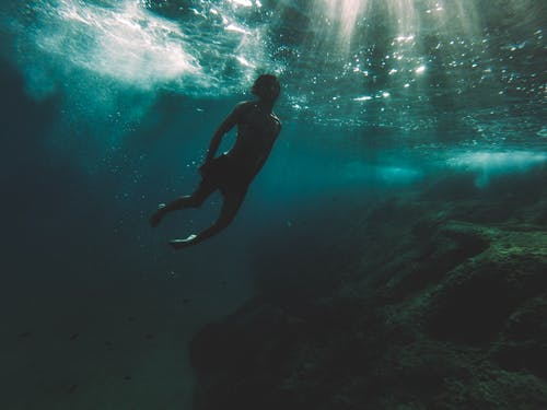 人, 勘探, 水下, 海 的 免費圖庫相片