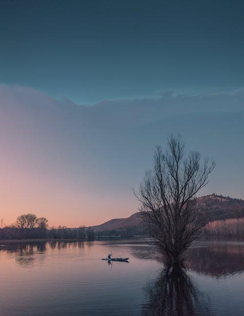 Immagine gratuita di alba, albero, canoa, crepuscolo