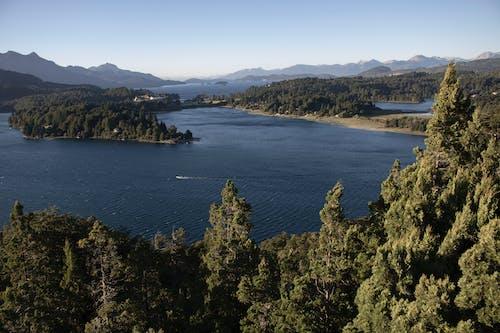 上から, 川, 木, 空中ショットの無料の写真素材