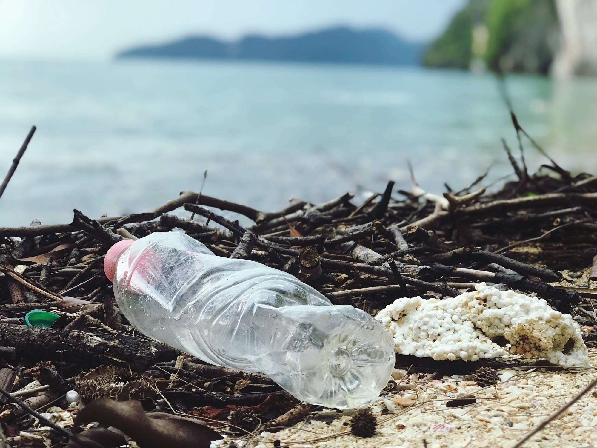 New WWF Report Highlights Challenges and Solutions in Corporate Plastic Management