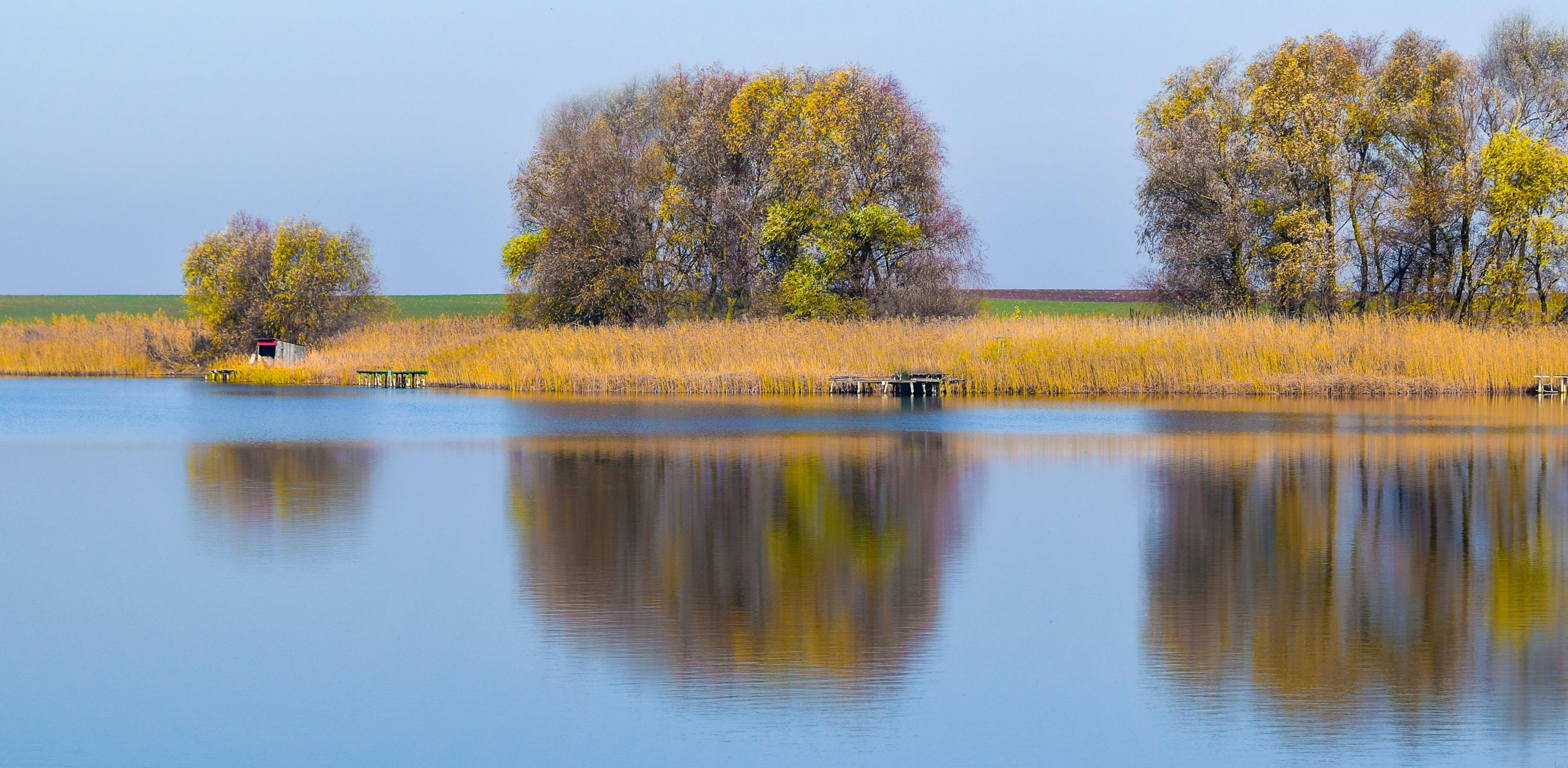 Free stock photo of autumn, calm, lake, mirror