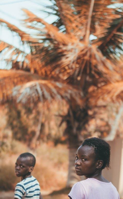 Fotos de stock gratuitas de chaval, chico africano, de pie, enfoque selectivo