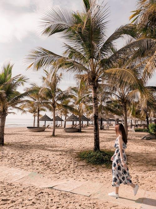 Ilmainen kuvapankkikuva tunnisteilla henkilö, hiekka, hiekkaranta, lomakohde