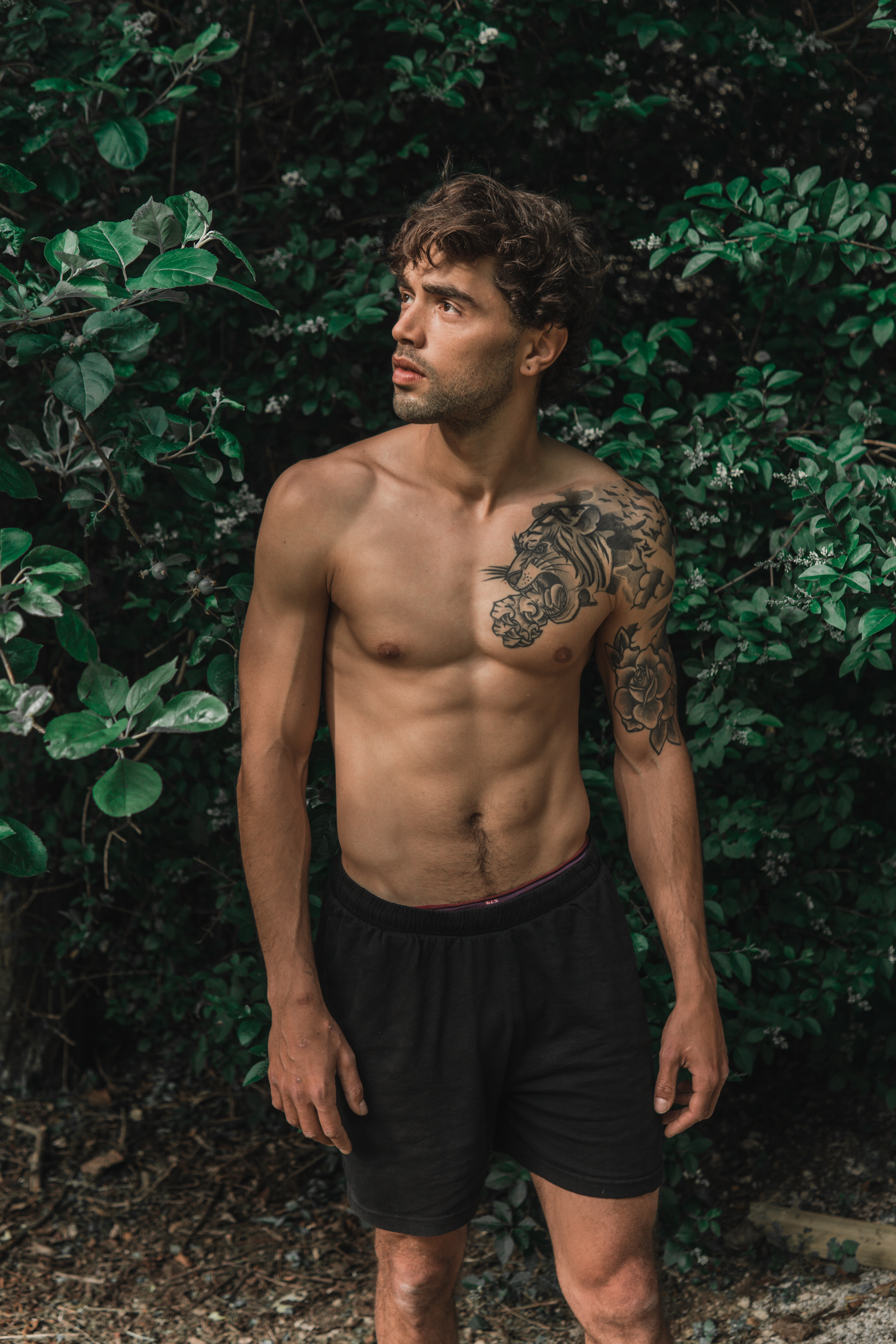 Photo Of Shirtless Man In Black Board Shorts Standing In Front Of Green Leafed Plants Looking Away Free Stock Photo