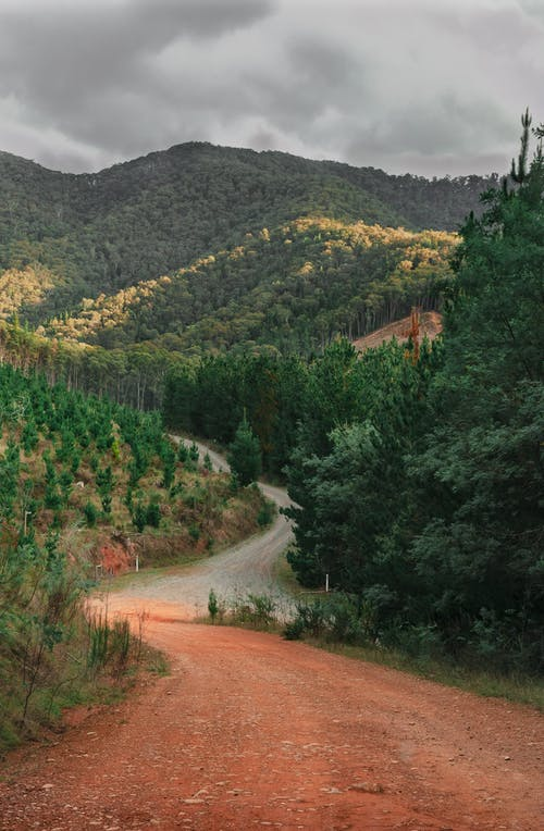 Free stock photo of autumn, bright, dusk, hills