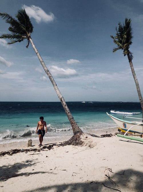 Man Standing Beside Coconut Tree