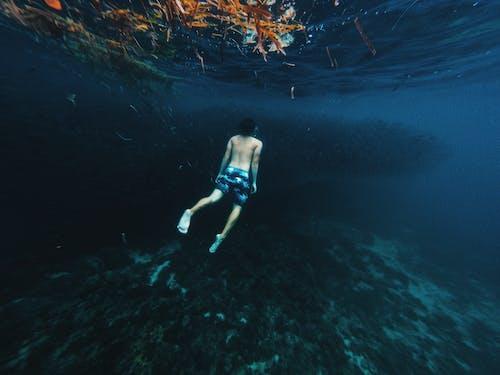 Безкоштовне стокове фото на тему «відпочинок, вода, водні види спорту, глибокий»
