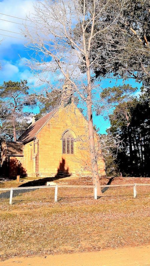 Základová fotografie zdarma na téma církev, dvorek, pískovec, strom