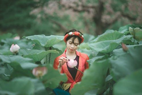 Ingyenes stockfotó ázsiai nő, gyár, levelek, lótusz témában