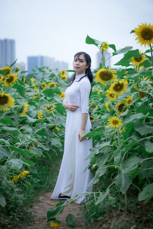 Side View Photo of Woman in a White Dress Standing in the Middle of a Sunflower Field