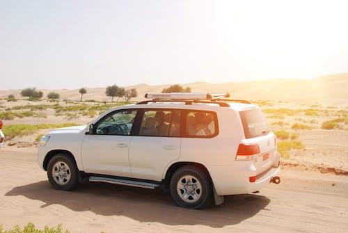 Fotobanka sbezplatnými fotkami na tému Jeep, púšť