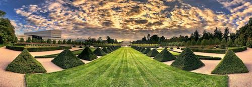 ウプサラ, パノラマ, 全景, 植物園の無料の写真素材
