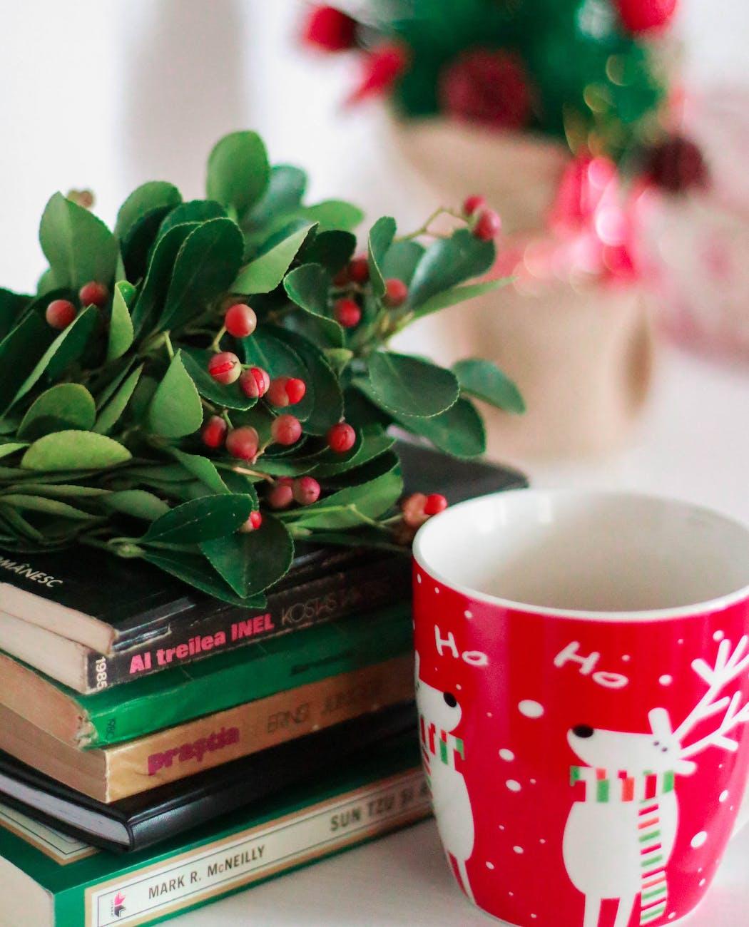 5 порад для виживання квітів взимку