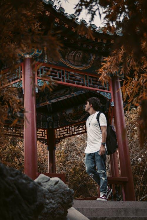 Foto profissional grátis de ao ar livre, arquitetura, Arquitetura asiática, arquitetura oriental
