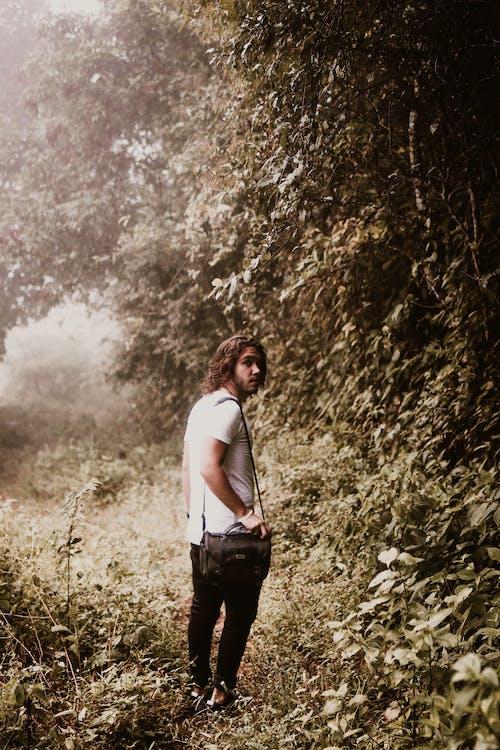 Foto profissional grátis de ao ar livre, árvores, homem, moda