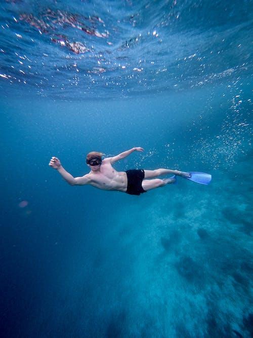 Ảnh lưu trữ miễn phí về biển, bơi lội, dưới nước, người bơi