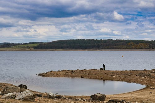 Free stock photo of country, country park, derwentside, durham