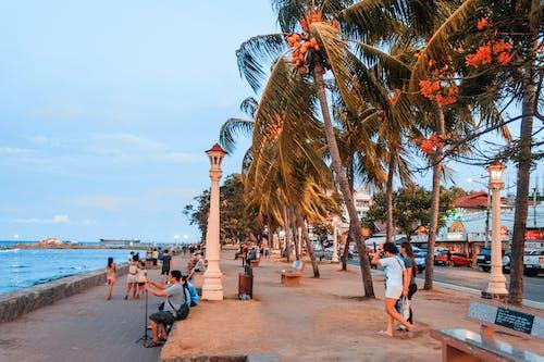 Fotobanka sbezplatnými fotkami na tému ľudia, more, oceán, palmy