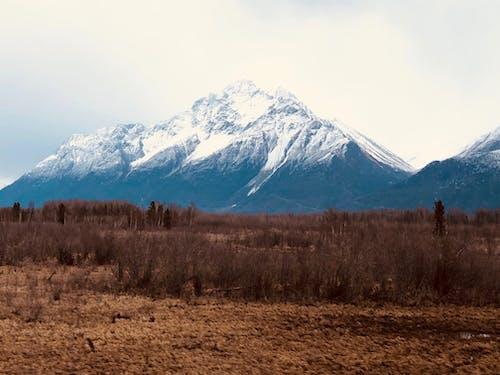 Безкоштовне стокове фото на тему «вершина гори, гора, засніжена гора, краєвид»