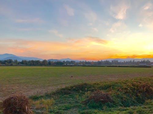Fotobanka sbezplatnými fotkami na tému farma, krásna krajina