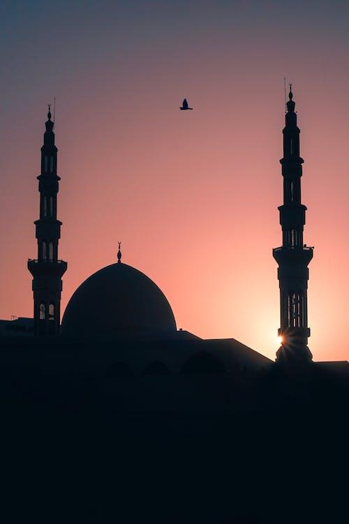 Základová fotografie zdarma na téma architektura, budova, chrám, kupole