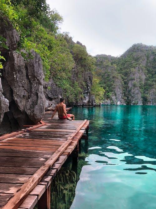 Immagine gratuita di acqua, acque calme, alberi, avventura