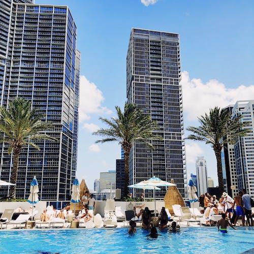 邁阿密 的 免费素材照片