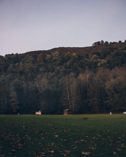 Photos gratuites de abri de jardin, arbres, cabane, campagne
