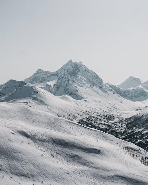 Immagine gratuita di alto, freddo, innevato, inverno