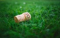 wood, field, grass