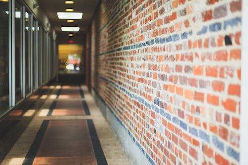 Kostnadsfri bild av glasvägg, korridor, perspektiv, tegelvägg