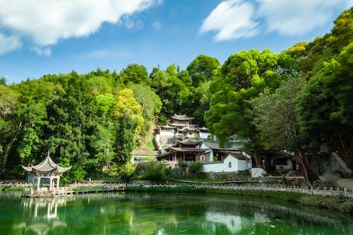 Foto profissional grátis de água, ao ar livre, arquitetura, árvores