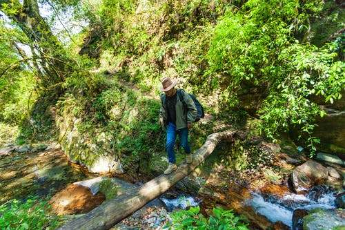 Man in Black Shirt, Green Jacket and Blue Denim Jeans Crossing Log Footbridge over Creek