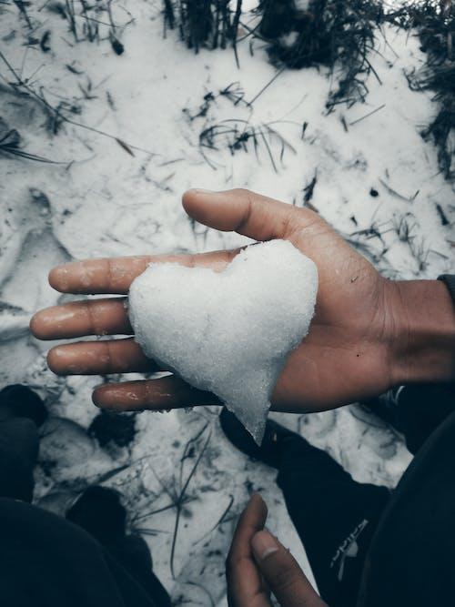 Immagine gratuita di freddo, ghiaccio, inverno, mano