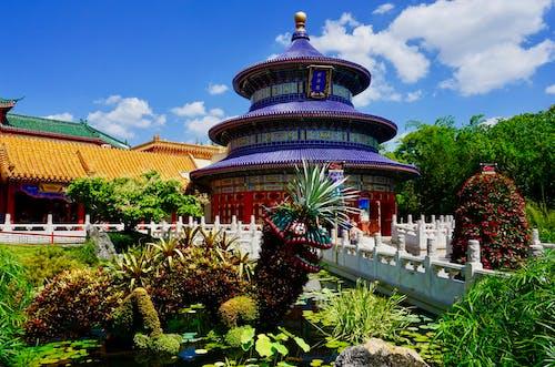 Photos gratuites de jardin chinois