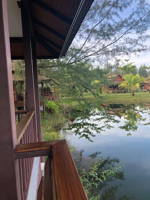 Gratis stockfoto met Azië, veranda, vijver, vis